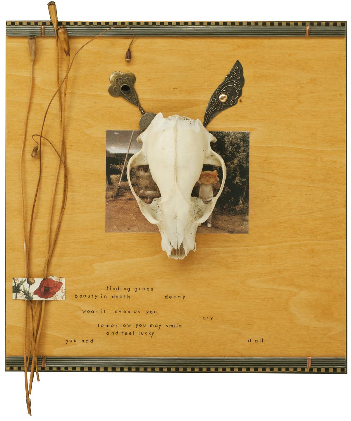 i_fox skull