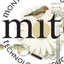 MITE-online classes k-12. branding