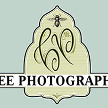 Bee Photographed, branding, illustration, print